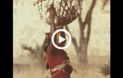 In viaggio con Rossif - L'alba africana